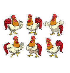 rooster set with cartoon style vector image