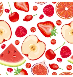 Seamless pattern of red fruits and berries vector image