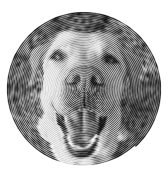 spiral with the dog vector image