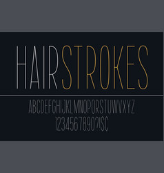 thin decorative bold font design alphabet vector image
