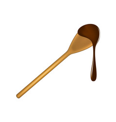wooden spoon with chocolate vector image