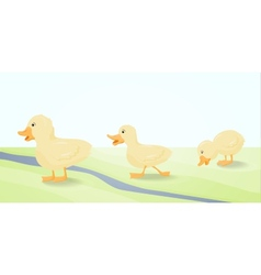 The three cute duckling vector image