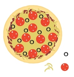 Pepperoni pizza with ingredients vector image vector image
