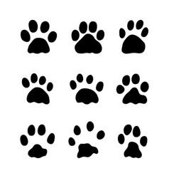 footprints rabbits vector image