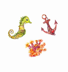 Seahorse anchor anemone set of watercolor sea vector