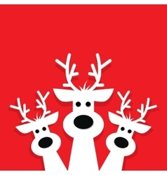 three white reindeer on a red background vector image