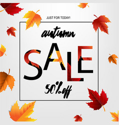autumn sale poster with leaf vector image