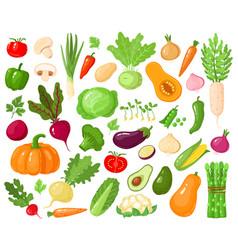 cartoon vegetables vegan veggies food tomato vector image
