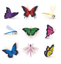 Dragonflies and butterflies set vector