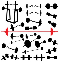 bodybuilding equipment vector image