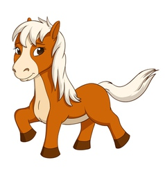 little horse isolated on white vector image vector image