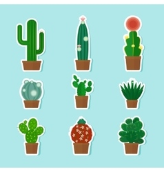 Cactus Icons vector image