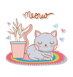 Cute cat in the rug with plant and hearts vector