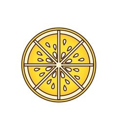 Delicious orange fruit isolated icon vector image
