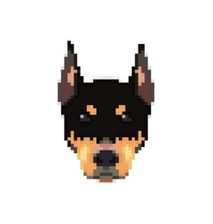 Doberman head in pixel art style vector
