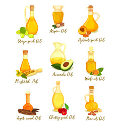 Set natural oil for cooking and body care food vector