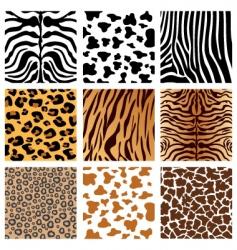 Animal prints vector