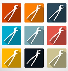 Pliers - Pincers Flat Design Icons Set vector image vector image