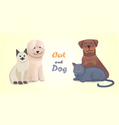 set cat and dog together cartoon characters vector image