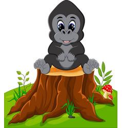 Cute baby gorilla sitting on tree stump vector