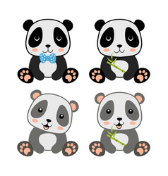 cute panda character with bamboo branch vector image