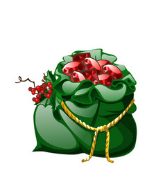 Green velvet sack tied with a golden rope with red vector