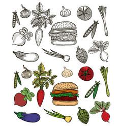 set with hamburger vector image