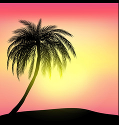 Sunset and tropical palm tree with colorful vector