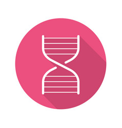 Dna chain model flat linear long shadow icon vector