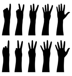 hands counting from 1 to 5 vector image
