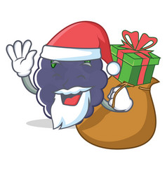 Santa with gift blackberry character cartoon style vector
