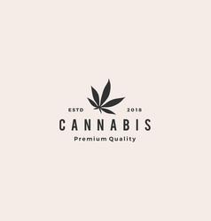 cannabis leaf logo icon vector image