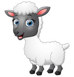 cartoon funny sheep posing vector image