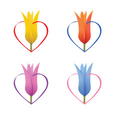 lily in heart vector image