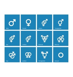 Sexual orientation icons on blue background vector image