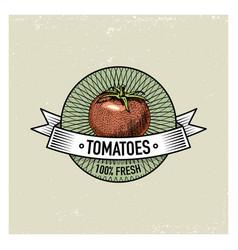 tomatoes vintage set labels emblems or logo vector image