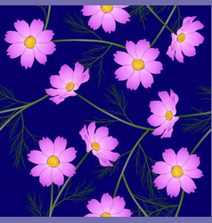 pink cosmos flower on blue background vector image