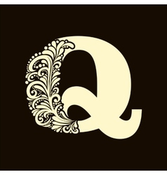 Elegant capital letter Q in the style Baroque vector image