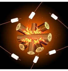 Fire camping marshmallows top view marshmallow vector image