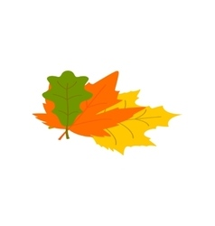 Autumn leaves isometric 3d icon vector image