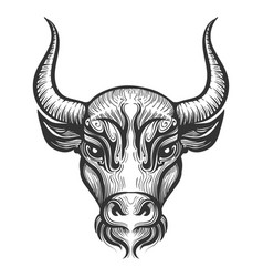 bull head engraving vector image