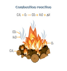 Combustion reaction - wood burning at fire camp vector