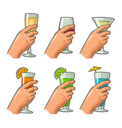 female hand holding a glasses of cocktails vector image