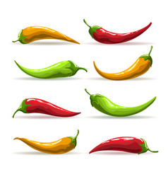 hand drawn red yellow and green chili pepper set vector image