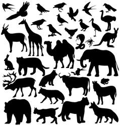 Image animals vector
