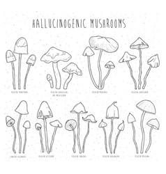 set hallucinogenic mushrooms vector image