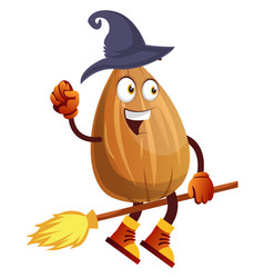 Almond riding broomstick with witches hat on on vector