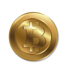 bitcoin sign isolated vector image