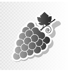 grapes sign new year vector image