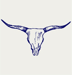 Head skull of bull vector image vector image